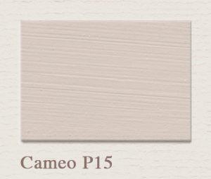 Cameo P15