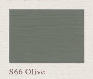 S66 Olive